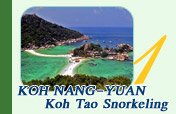 Half Day Tour Khai Island