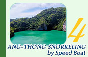 Full Day Snorkeling by Speed Boat